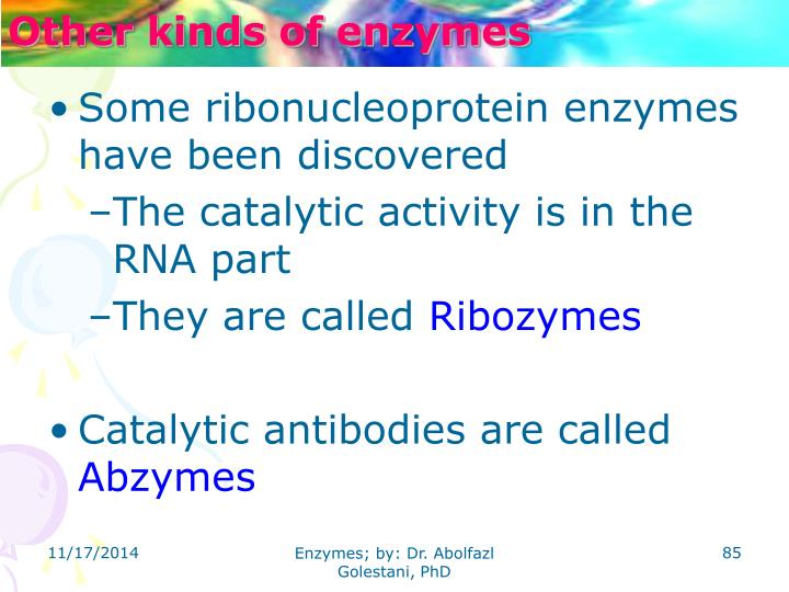 Other kinds of enzymes