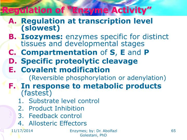 "Regulation of ""Enzyme Activity"""