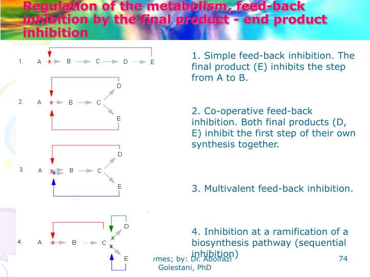 Regulation of the metabolism, feed-back inhibition by the final product - end product inhibition