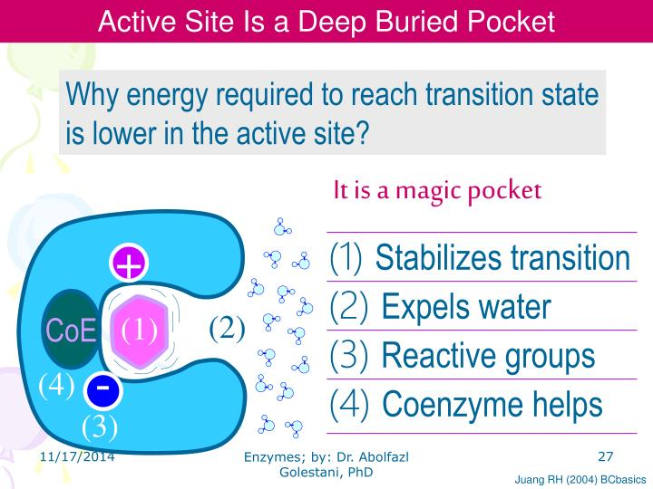 Active Site Is a Deep Buried Pocket