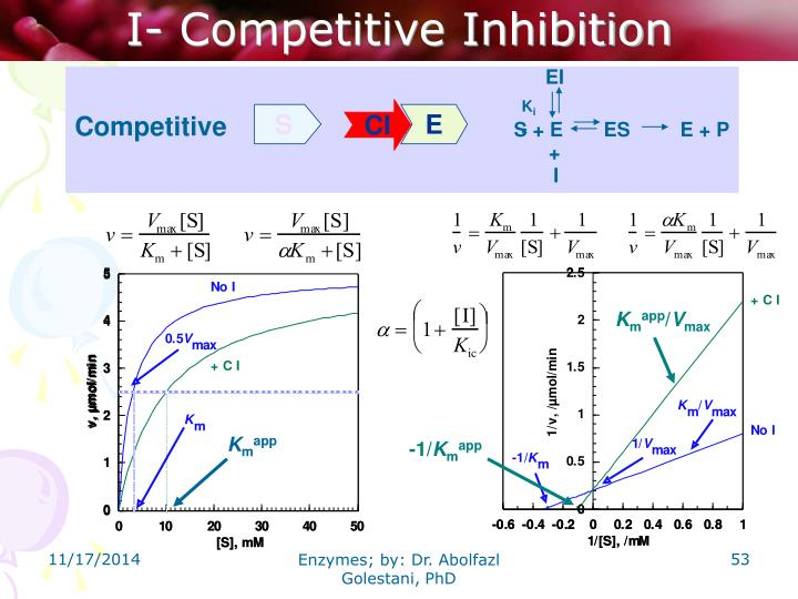 I- Competitive Inhibition