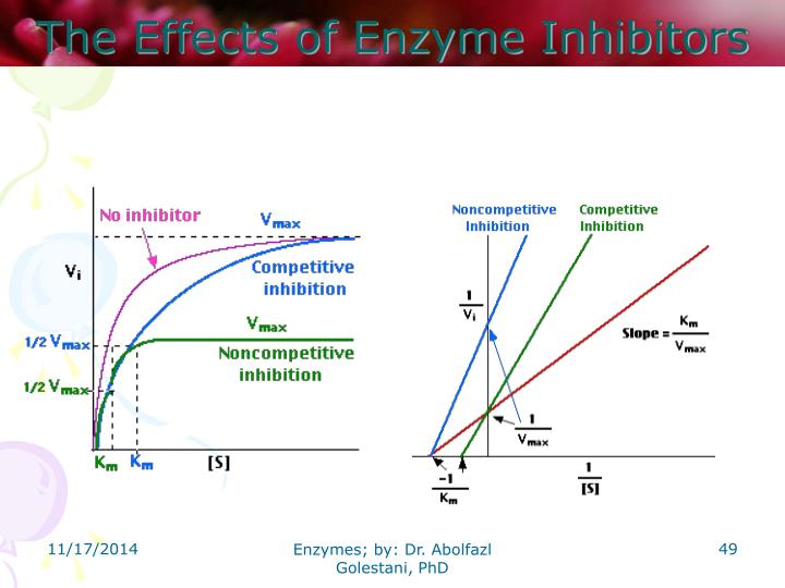 The Effects of Enzyme Inhibitors