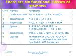there are six functional classes of enzymes