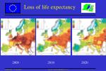loss of life expectancy