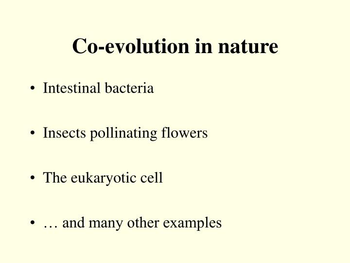 Co-evolution in nature