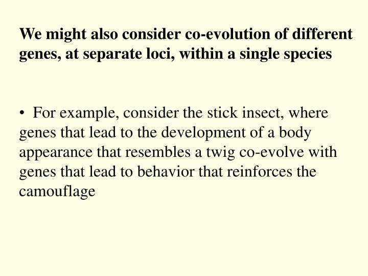 We might also consider co-evolution of different genes, at separate loci, within a single species