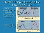 effects of temperature and ph on enzymatic activity