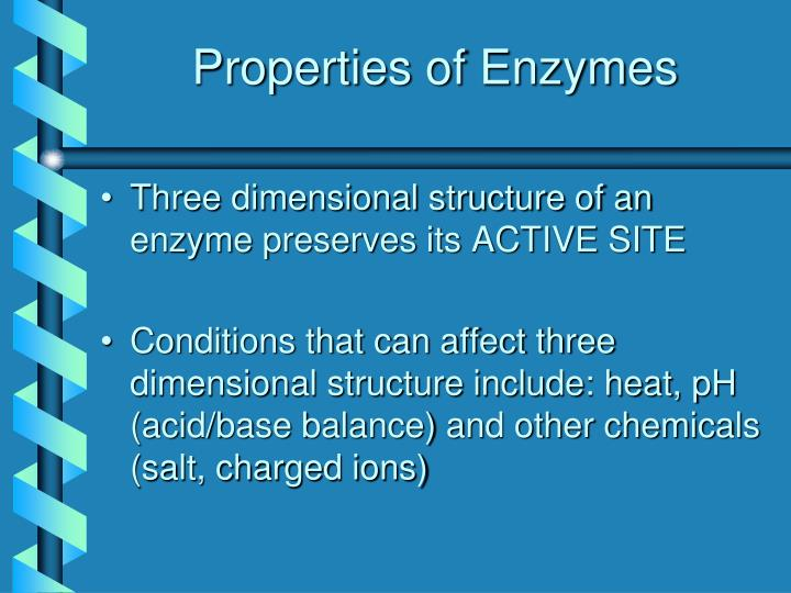 Properties of Enzymes