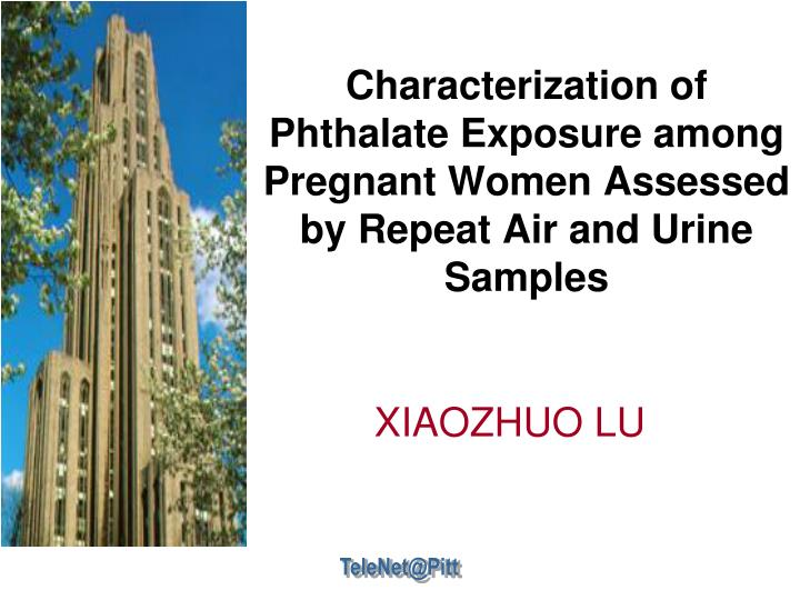 Characterization of Phthalate Exposure among Pregnant Women Assessed by Repeat Air and Urine Samples