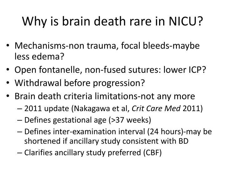 Why is brain death rare in NICU?