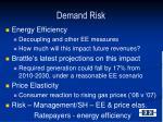 demand risk1