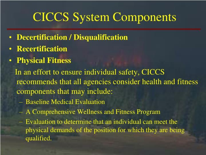 CICCS System Components
