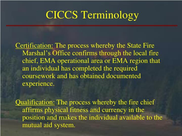 CICCS Terminology