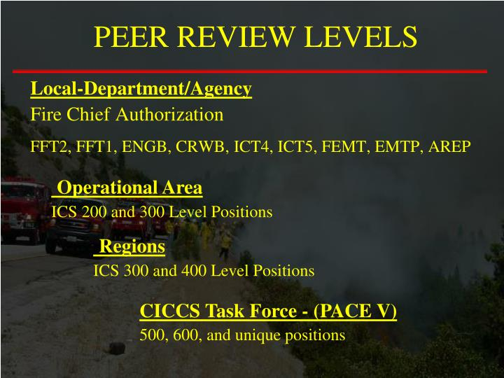 PEER REVIEW LEVELS