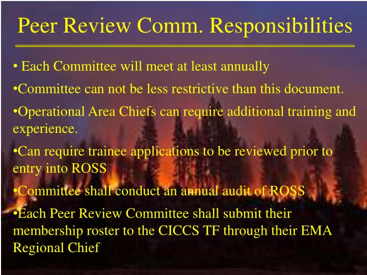 Peer Review Comm. Responsibilities