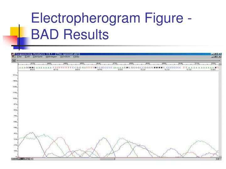 Electropherogram Figure - BAD Results