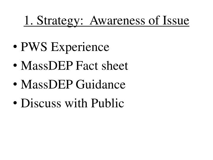 1. Strategy:  Awareness of Issue