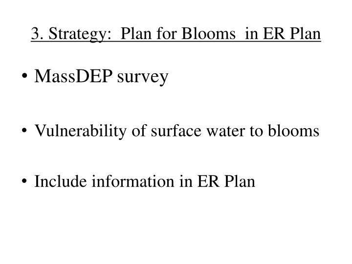 3. Strategy:  Plan for Blooms  in ER Plan