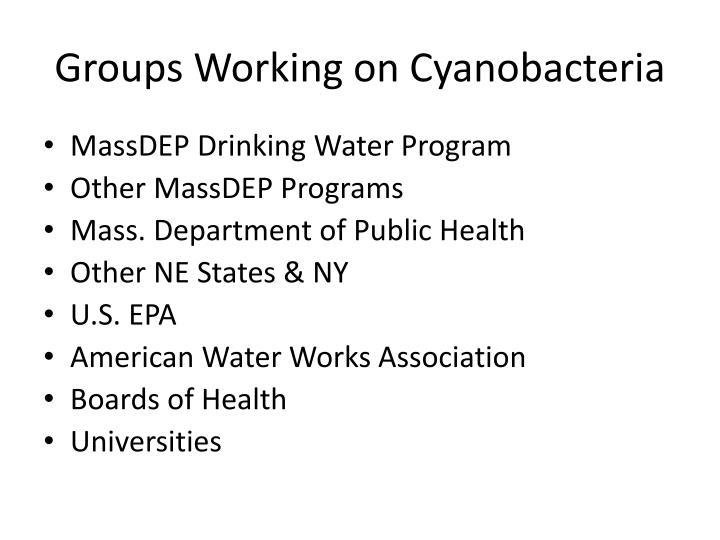 Groups Working on Cyanobacteria