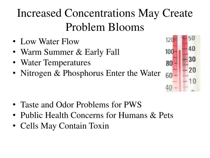 Increased concentrations may create problem blooms