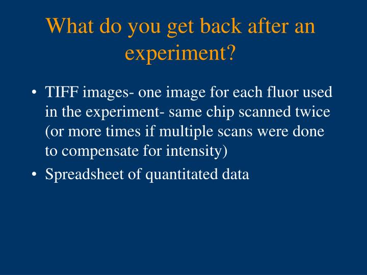 What do you get back after an experiment?