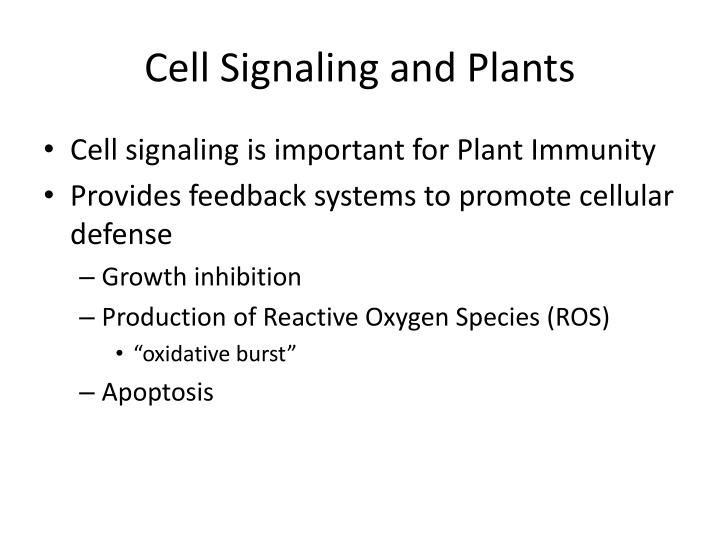 Cell Signaling and Plants
