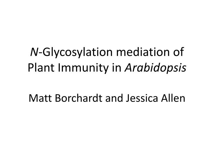 N glycosylation mediation of plant immunity in arabidopsis matt borchardt and jessica allen