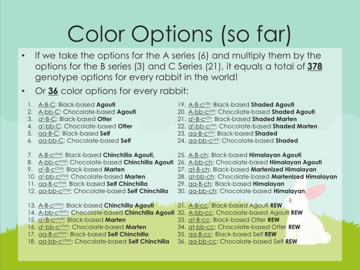 Color Options (so far)