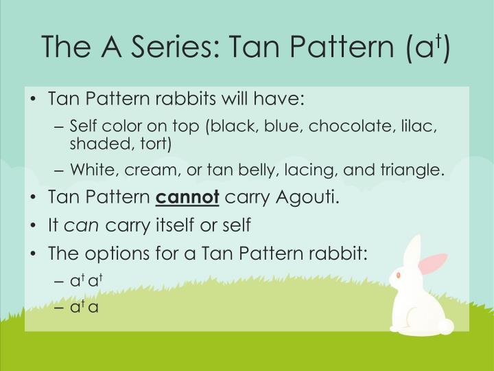 The A Series: Tan Pattern (a