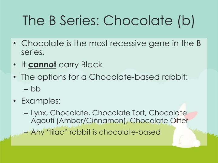 The B Series: Chocolate (b)