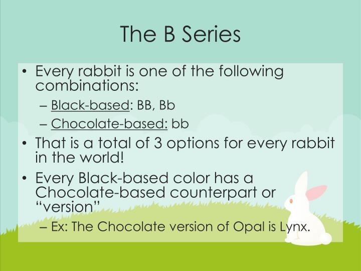 The B Series