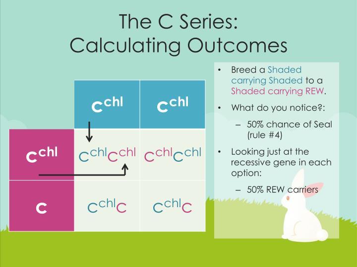 The C Series: