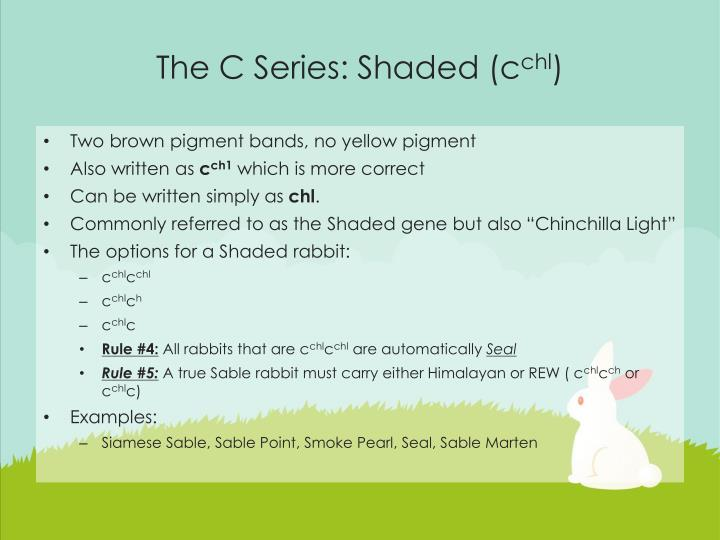 The C Series: Shaded (c