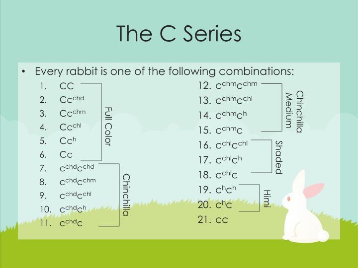 The C Series