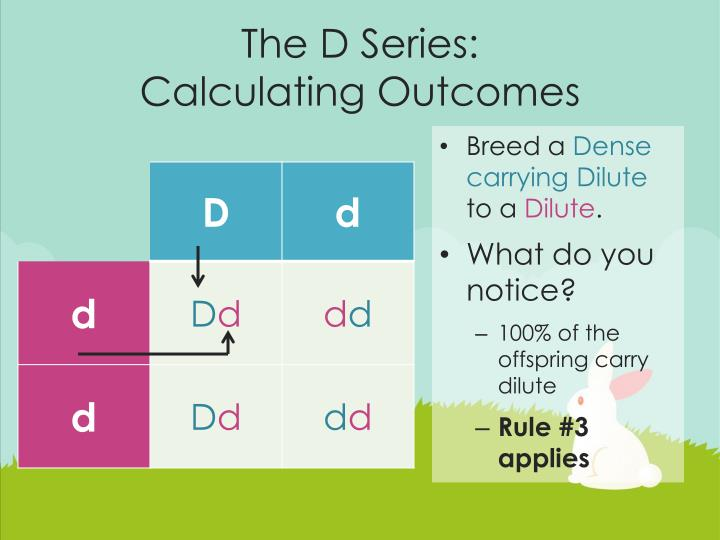 The D Series: