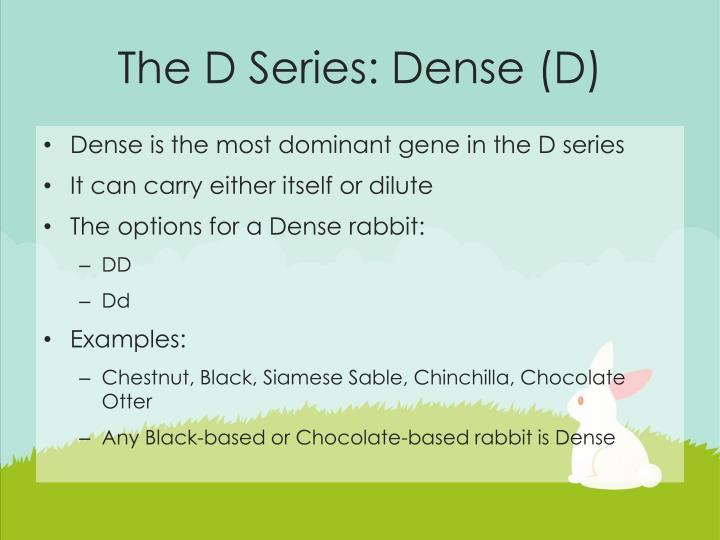 The D Series: Dense (D)
