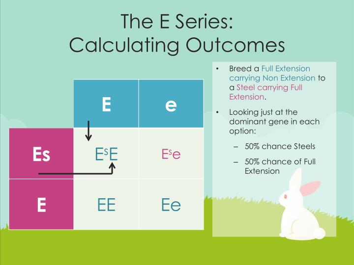 The E Series: