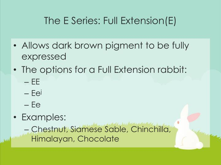 The E Series: Full Extension(E)