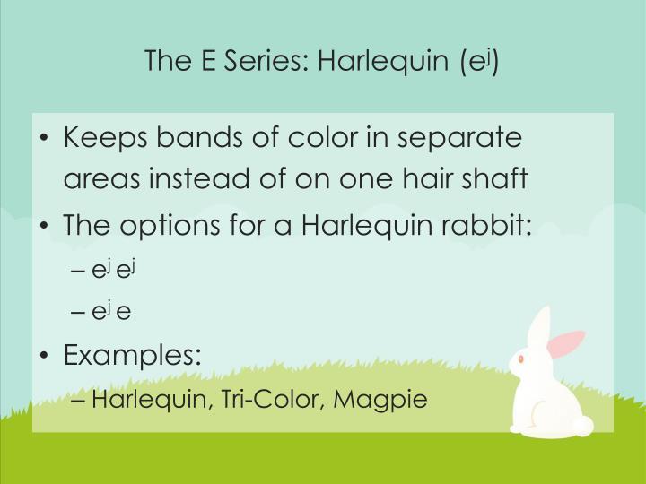 The E Series: Harlequin (e