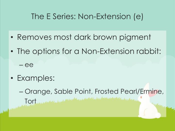The E Series: Non-Extension (e)