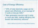 cost of energy efficiency