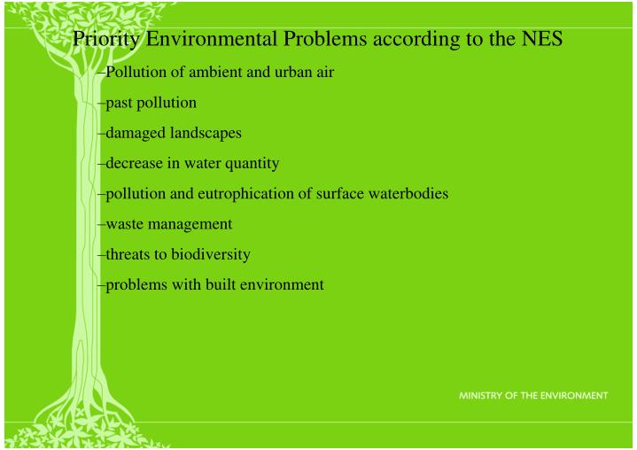 Priority Environmental Problems according to the NES