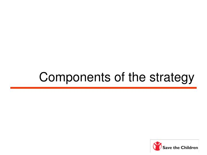 Components of the strategy