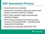 ehc assessment process4