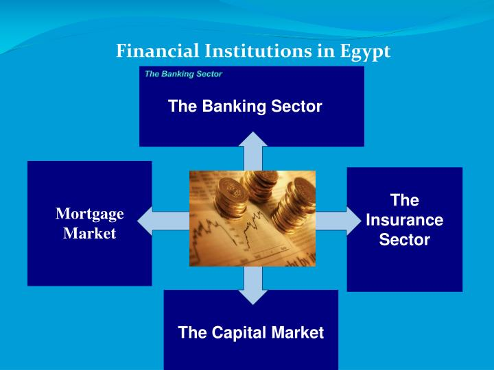 Financial Institutions in Egypt