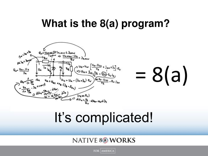 What is the 8(a) program?