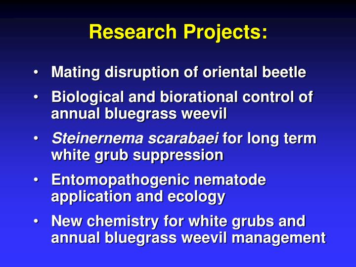 Research Projects: