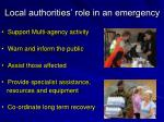 local authorities role in an emergency