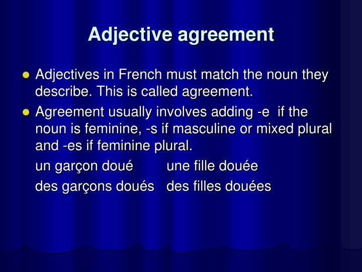 Adjective agreement