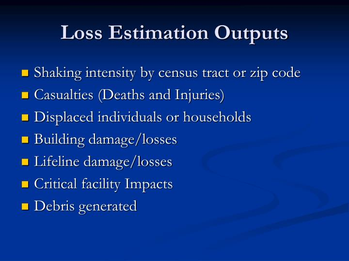 Loss Estimation Outputs